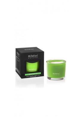 Ароматическая свеча Зеленый инжир и ирис / Green fig & iris